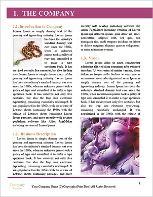 0000061325 Word Template - Page 3