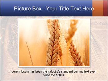 0000061328 PowerPoint Template - Slide 15