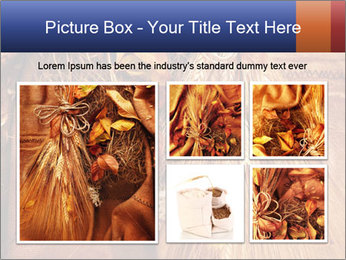 0000061328 PowerPoint Template - Slide 19