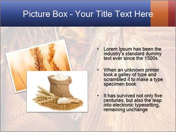 0000061328 PowerPoint Template - Slide 20