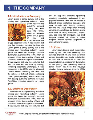 0000061328 Word Template - Page 3