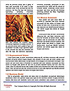 0000061328 Word Template - Page 4
