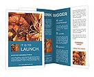 0000061329 Brochure Templates