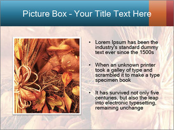 0000061329 PowerPoint Templates - Slide 13