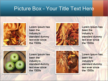 0000061329 PowerPoint Templates - Slide 14