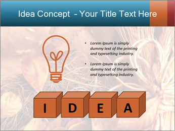 0000061329 PowerPoint Templates - Slide 80