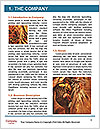 0000061329 Word Templates - Page 3