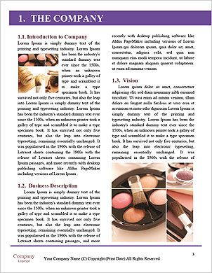 0000061336 Word Template - Page 3
