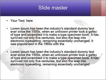 0000061340 PowerPoint Template - Slide 2