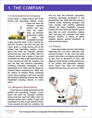 0000061340 Word Template - Page 3