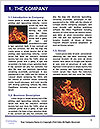 0000061342 Word Template - Page 3