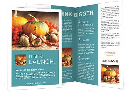 0000061343 Brochure Template