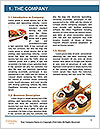 0000061349 Word Template - Page 3