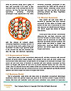0000061350 Word Templates - Page 4