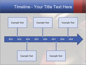 0000061358 PowerPoint Templates - Slide 28