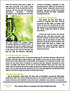 0000061361 Word Templates - Page 4