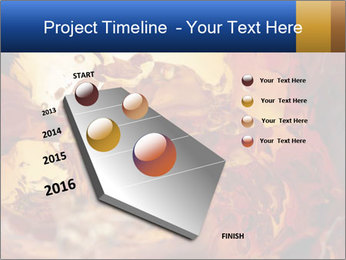 0000061370 PowerPoint Templates - Slide 26