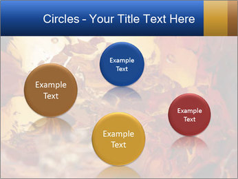 0000061370 PowerPoint Templates - Slide 77