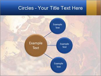 0000061370 PowerPoint Template - Slide 79