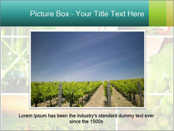 0000061379 PowerPoint Template - Slide 15