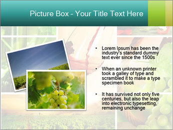 0000061379 PowerPoint Template - Slide 20