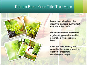 0000061379 PowerPoint Template - Slide 23