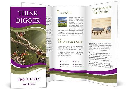 0000061388 Brochure Template