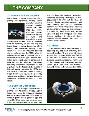 0000061390 Word Template - Page 3