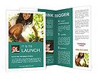 0000061391 Brochure Templates