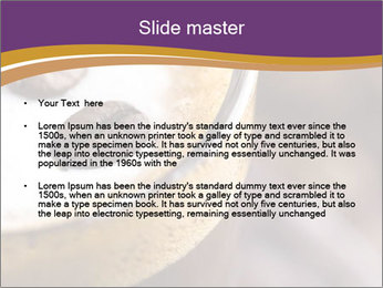 0000061396 PowerPoint Template - Slide 2
