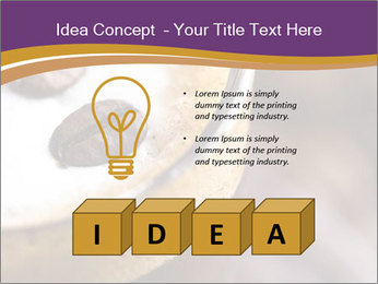 0000061396 PowerPoint Template - Slide 80