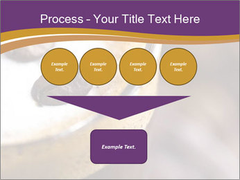 0000061396 PowerPoint Template - Slide 93