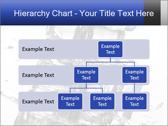 0000061398 PowerPoint Templates - Slide 67