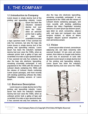 0000061398 Word Template - Page 3