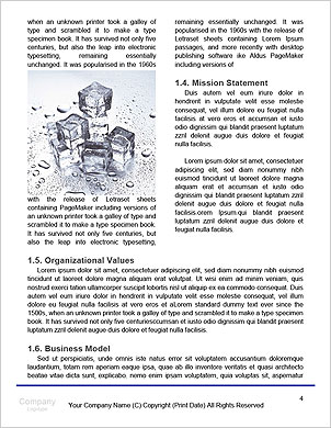 0000061398 Word Template - Page 4
