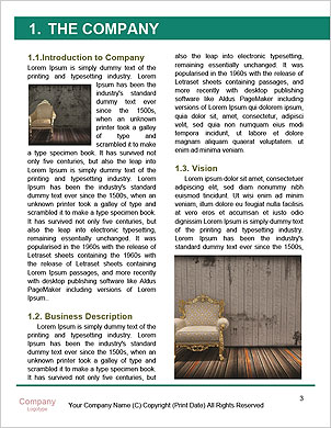 0000061404 Word Template - Page 3