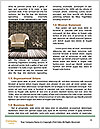 0000061405 Word Templates - Page 4