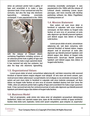 0000061411 Word Template - Page 4