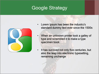0000061413 PowerPoint Templates - Slide 10
