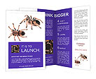 0000061418 Brochure Templates