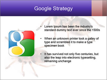 0000061418 PowerPoint Template - Slide 10