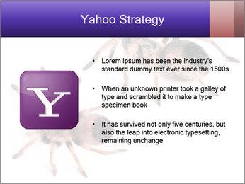 0000061418 PowerPoint Template - Slide 11