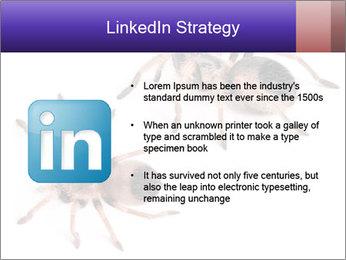 0000061418 PowerPoint Template - Slide 12