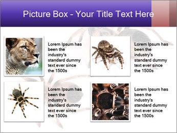 0000061418 PowerPoint Template - Slide 14