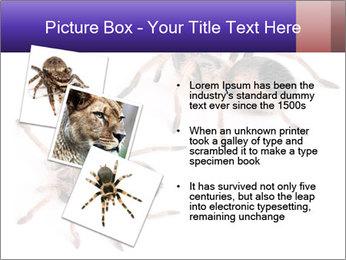 0000061418 PowerPoint Template - Slide 17
