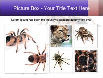 0000061418 PowerPoint Template - Slide 19