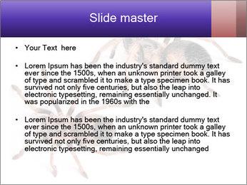 0000061418 PowerPoint Template - Slide 2