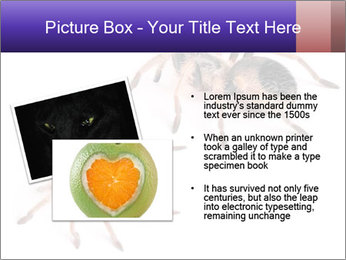 0000061418 PowerPoint Template - Slide 20