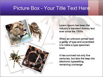 0000061418 PowerPoint Template - Slide 23