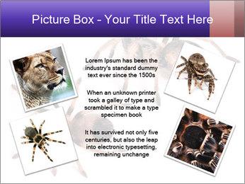 0000061418 PowerPoint Template - Slide 24